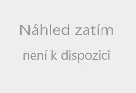 Preview webcam image The ski resort Kamenec