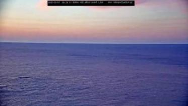 Preview webcam image Kallithea