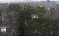 Preview webcam image Jurmala - Park