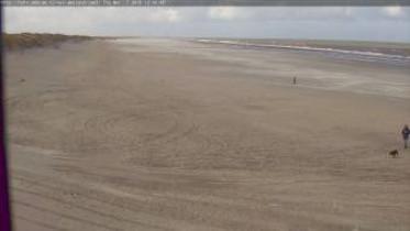 Preview webcam image Nes