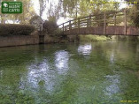 Preview webcam image Whitchurch - River Test