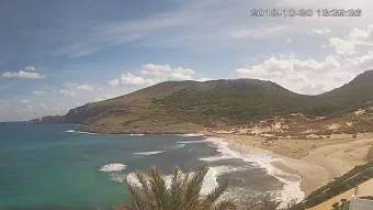 Preview webcam image Cala Mesquida