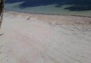 Preview webcam image Greenyard Bulabog Kite Beach