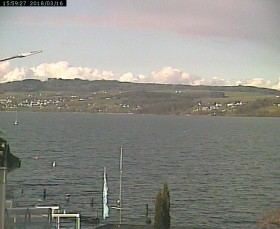 Preview webcam image Beinwil am See