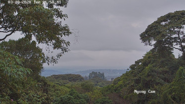 Preview webcam image Ngong Hills