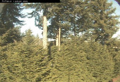 Preview webcam image Camano Island