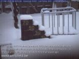 Preview webcam image Wirtzfeld